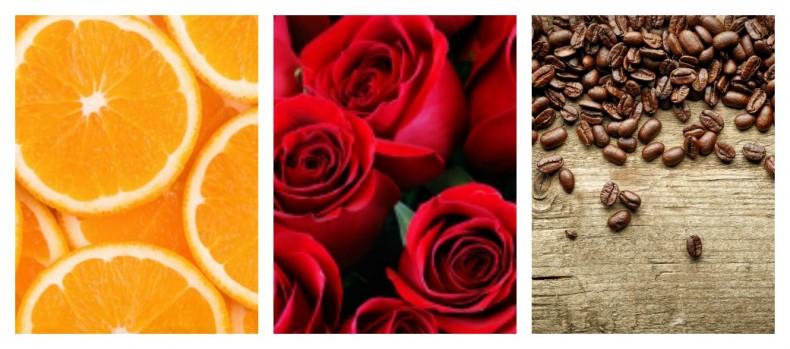 על כל צבעי הקשת – משמעות הצבעים אדום, חום וכתום