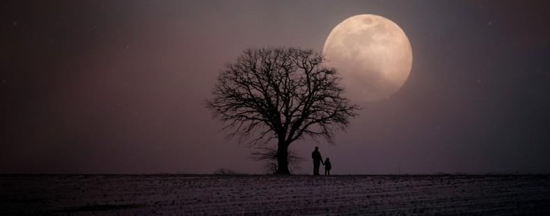 משמעות הירח המלא נובמבר – ירח הבונה